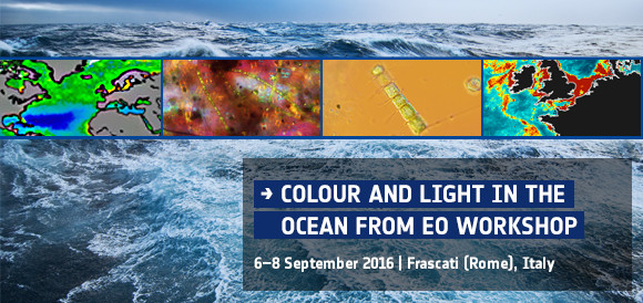 Colour and Light in the Ocean from Earth Observation